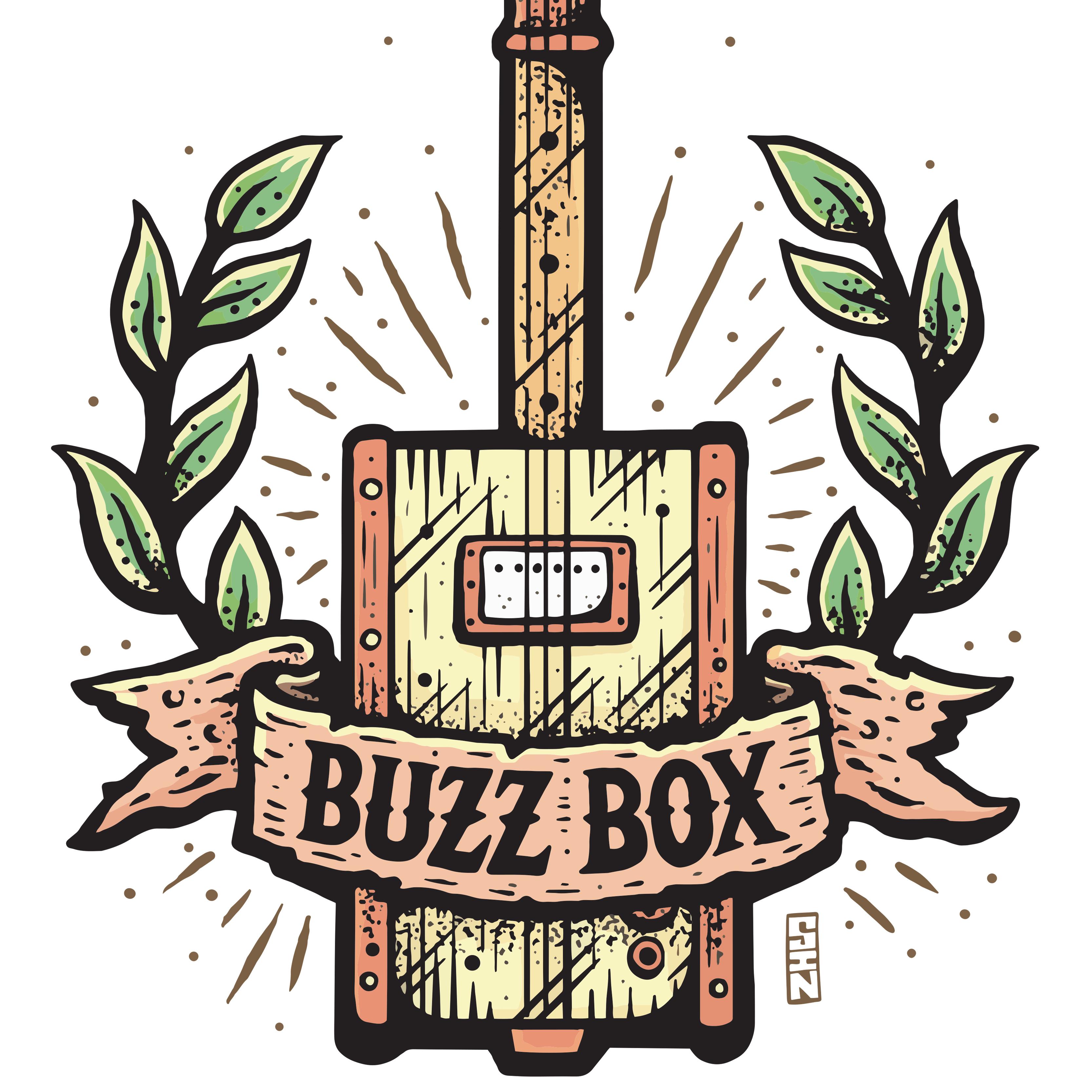 Buzz Box Guitars