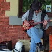 Blind Kiwi