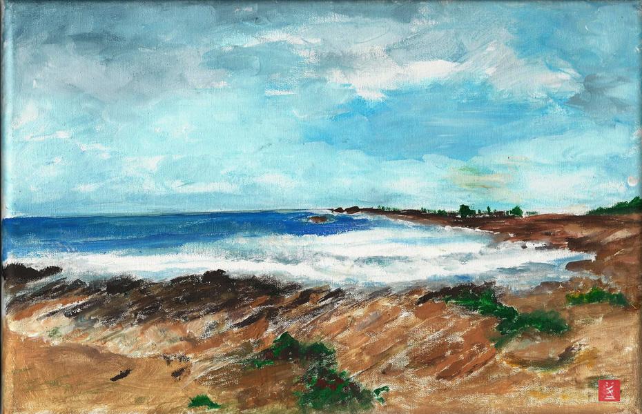 9 septembre 2019 - Quiberon sur la côte sauvage