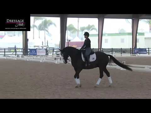 Robert Dover's Revelation About Forward In Dressage