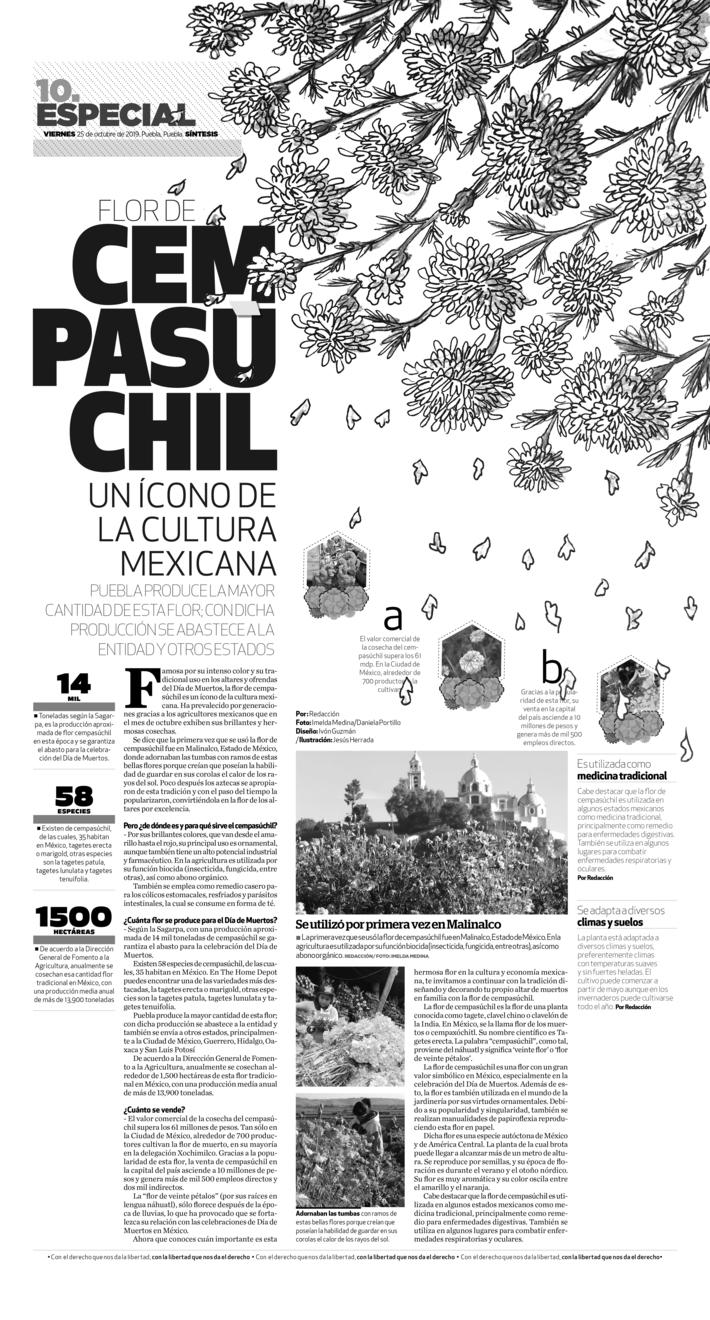 Flor de Cempasúchil  un ícono de la cultura mexicana