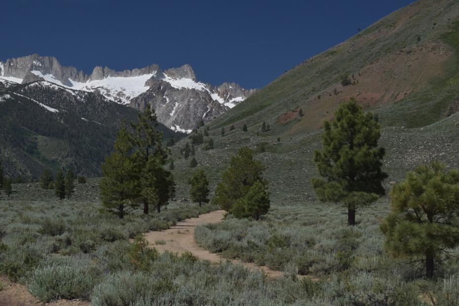 High Sierra Nevada