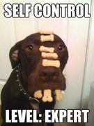 self control test