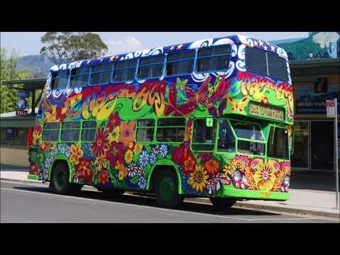 Magic Bus             Tribute           A. D. Eker          2019