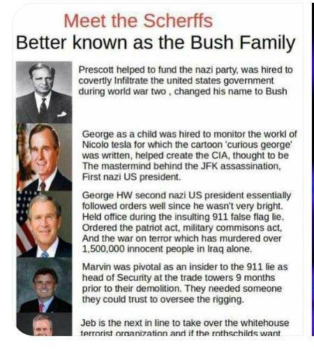 bush1