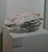 shell_bowl