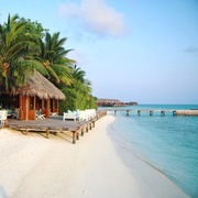 Why Is Maldives a Tropical Paradise for Couples?