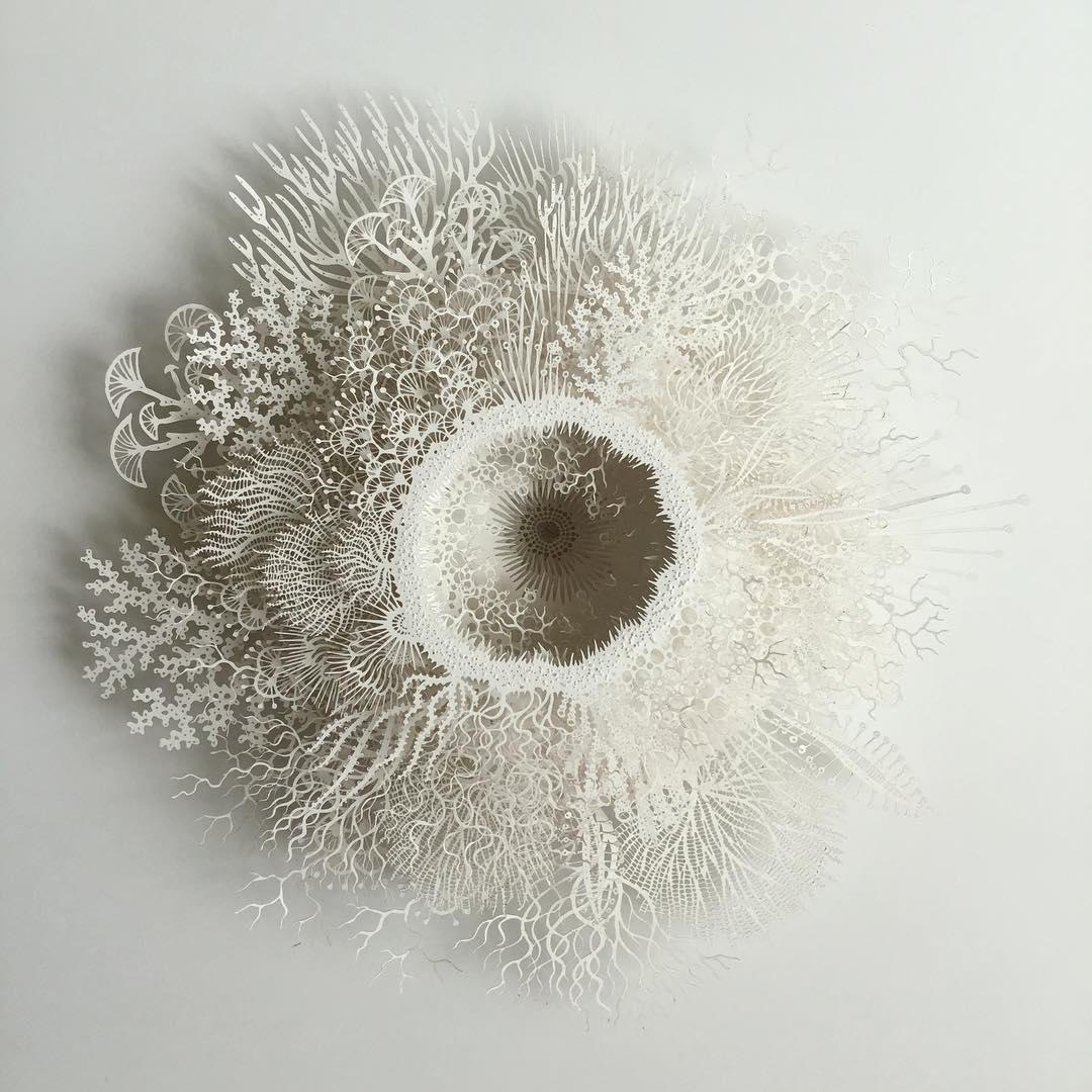 სკულპტურა, ქაღალდი, კვეთა, მიკროსკოპი, ბოჭკო, უჯრედი, qwellygraphy, ბლოგი, არტი, ხელოვნება, art