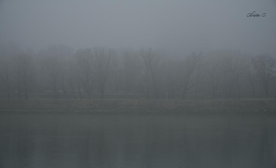Μες στην ομίχλη...