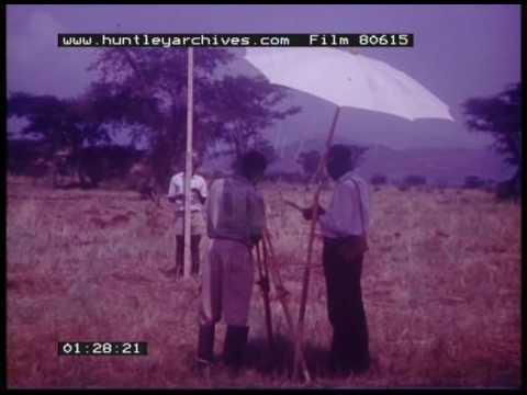 Land Surveying, 1960s - Film 80615