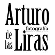 Arturo de las Liras