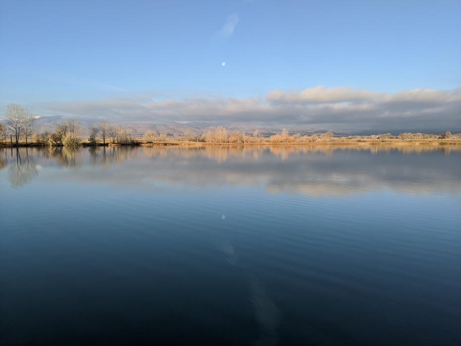 Coot Lake morning