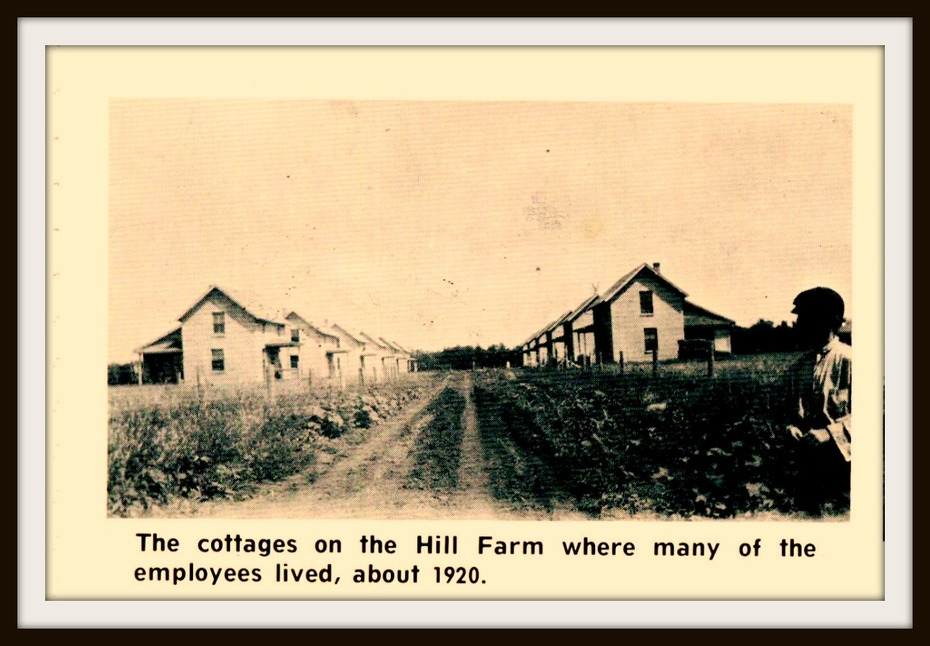 Northcote Hill Farm worker houses
