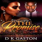 Promise Audio cover