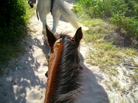 Riding In St Maartin, Caribbean.