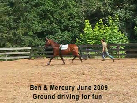 ground driving June 2009