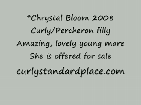 *Cyrstal Bloom