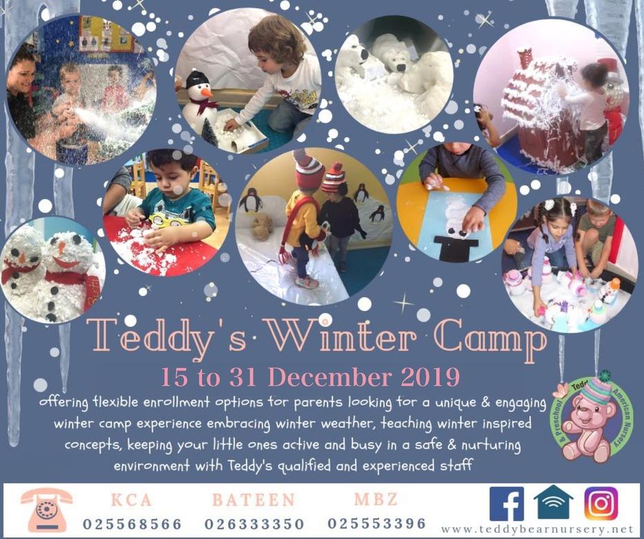 Teddy's Winter Camp