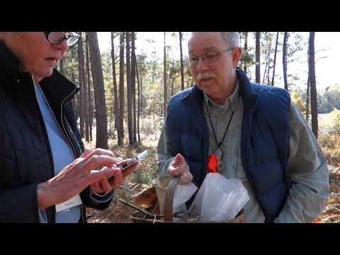 David Lewis at Watson Rare Native Plant Preserve Nov. 2019