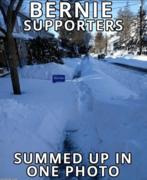 Bernie Supporters