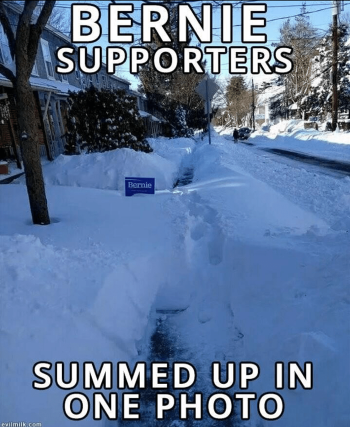 Bernie Supporters