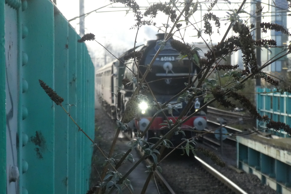"""Tornado"" at Finsbury Park station"