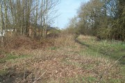 D16458 SMJ Trackbed @ Towcester 23.3.19