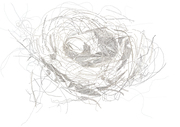 Nest Pretoria