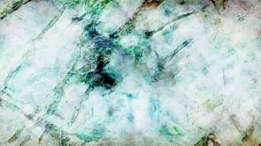 Goldberg Variations, Variation 11 FB image sequence