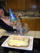 Fox's 1st Birthday 8-21-10 006