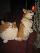 Squishee friends