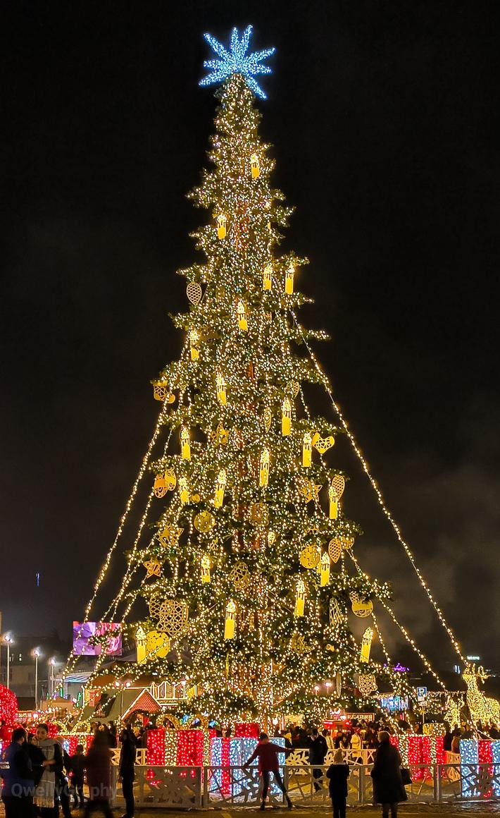 მილიონერი ნაძვის ხე - როკფელერის შური