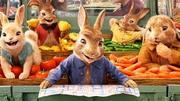 Peter Rabbit 2: The Runaway (2020) dfgvdsg
