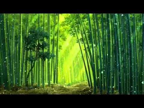 บรรเลงพิณเพื่อสมาธิ (2) ไพเราะมาก : Sound for meditation