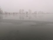 Foggy morning at Coot Lake