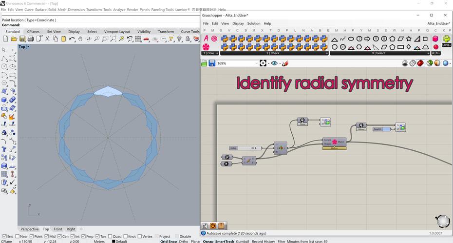 Alita identifies radial symmetry