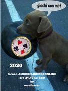 torneo AMICIDELBRIDGEONLINE/ros    13  aprile  2020 ore 21.40 su BBO