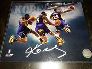 Likely not Genuine: Kobe Bryant Signed 8x10 Photo Auto NBA Holo Sticker COA Los Angeles Lakers HOF $135.50