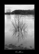 Flood of River Ruhr I