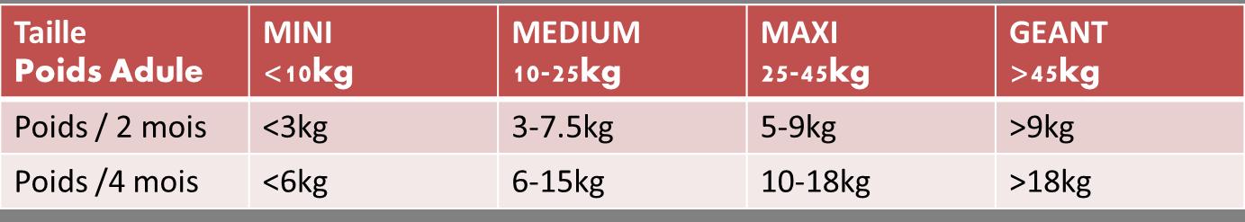 Evolution du poids d'un chiot - Page 2 410728354?profile=original
