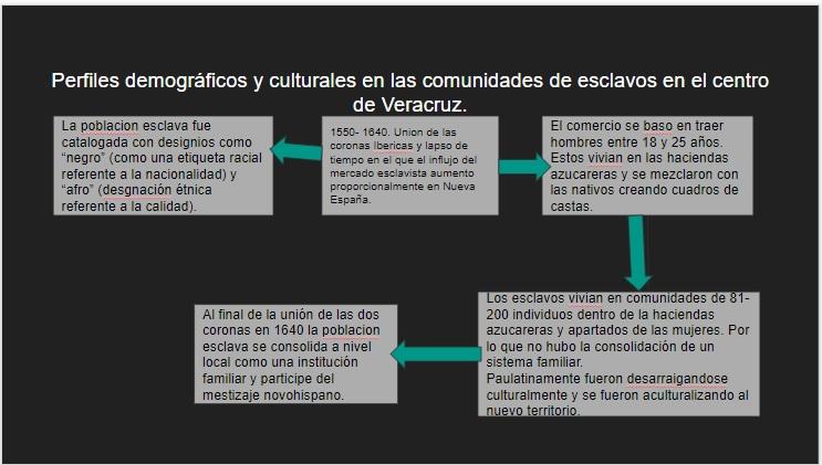 """cuadro de """"Perfiles demograficos y culturales en las comunidades de esclavos del centro de Veracruz""""."""