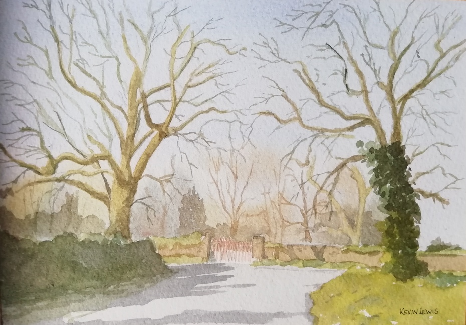Winter Trees at Carraig