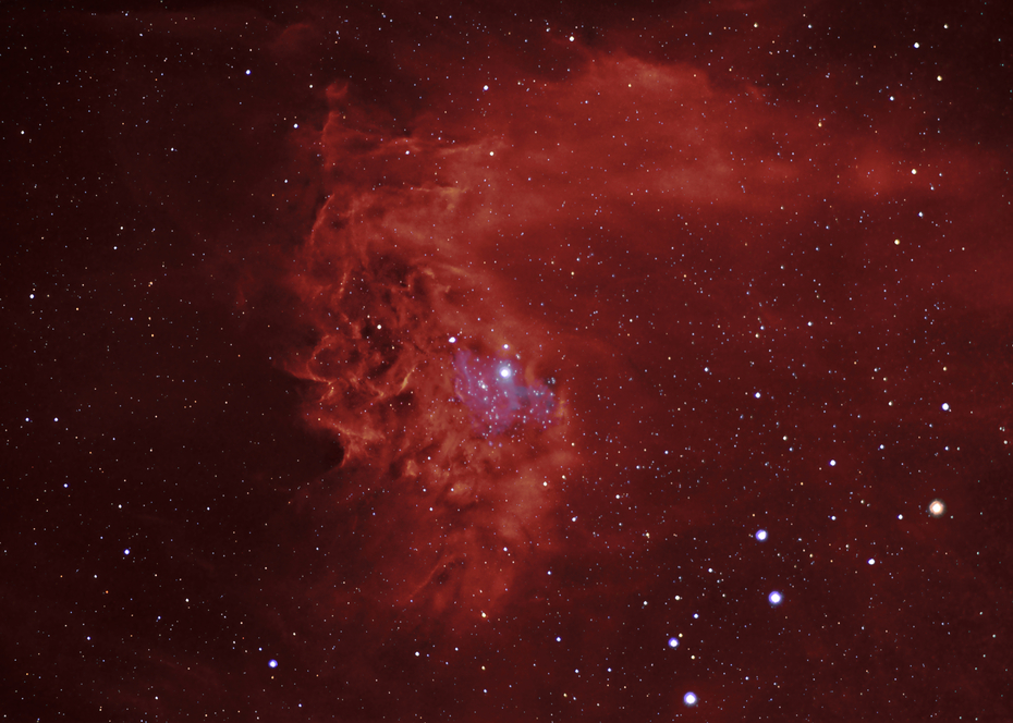 Flammande stjärnnebulosan i färg