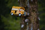 Hanging Bus