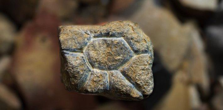 Hallan en Sulawesi (Indonesia) dos artefactos artísticos móviles de unos 26.000 años de antigüedad