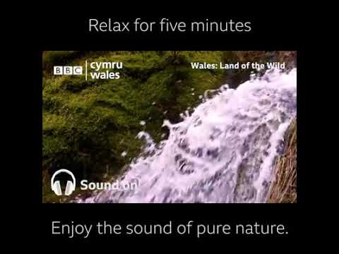 Relax for Five Minutes with the Awesome Beauty of Nature