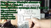 Tarp Theory
