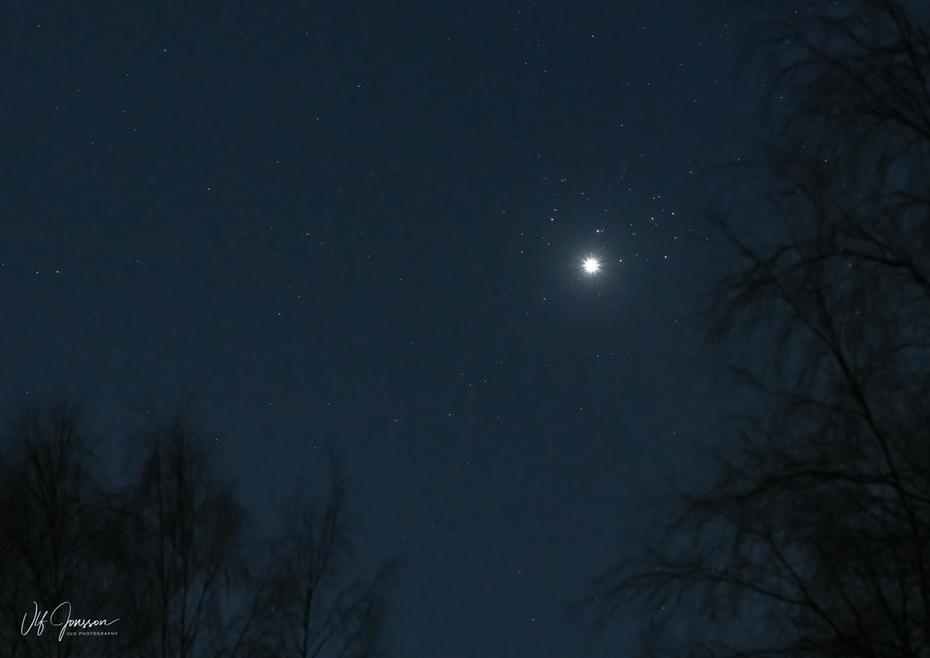 Venus framför M45