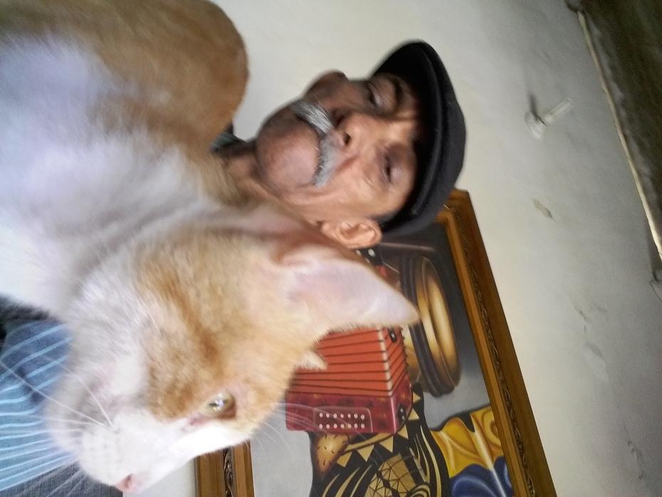 El poeta y su gato