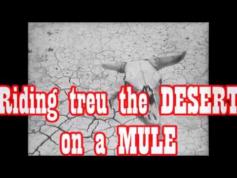 Riding treu the Desert on a Mule               A. D. Eker       2018